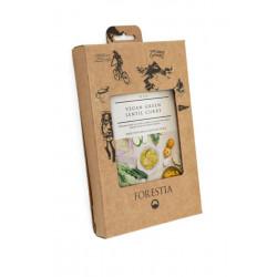 Forestia Curry de lentilles vertes végétaliennes au curry Autochauffant